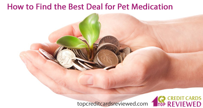 How to Find the Best Deal for Pet Medication